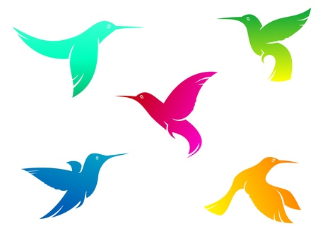 Flying hummingbirds set with color plumage isolated on white background Vector