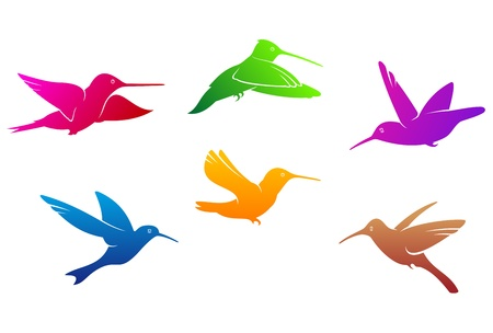 Hummingbirds symbols set with color plumage isolated on white background