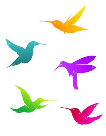 Colorful flying hummingbirds set isolated on white background Vector