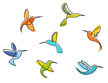 tatouage oiseau: R�sum� colibris color�s isol� sur fond blanc