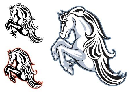 yegua: Caballo salvaje semental para la mascota o el diseño del tatuaje