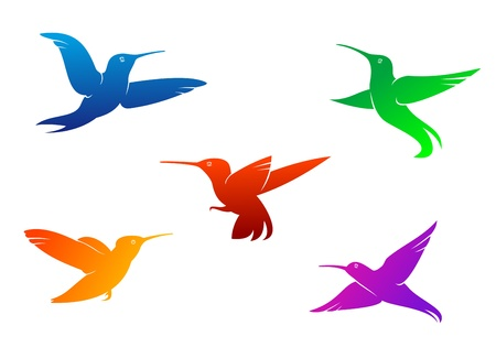 Flying hummingbirds set with color plumage isolated on white background Stock Vector - 17617818