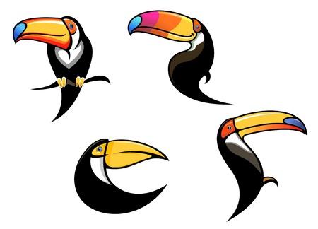орнитология: Смешные птицы тукан талисманы и символы, изолированных на белом фоне Иллюстрация