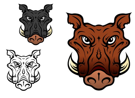 wild hog: Wild boar or hog in cartoon style for sports team mascot