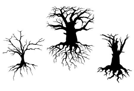 raices de plantas: Los árboles con ramas secas y raíces aisladas sobre fondo blanco. ilustración para el diseño del concepto de la ecología