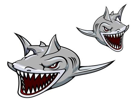 dangerous reef: Danger gray shark with sharp teeth. Vector illustration for sport team mascot Illustration