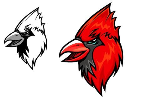 Red cardinal bird head in cartoon style. illustration for mascot design