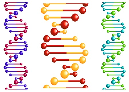 DNA molecule with elements for biology or medicine concept design Vector