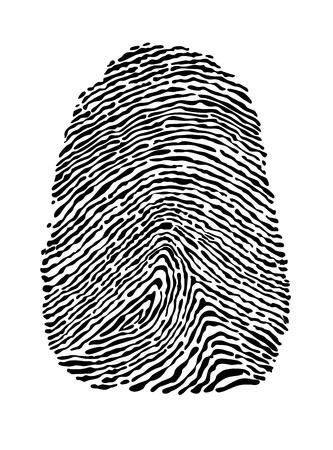 empreintes digitales: Les gens empreinte isol� sur fond blanc pour la conception de la notion de s�curit� Illustration