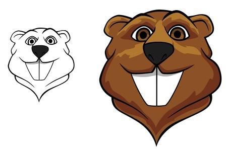 nutria caricatura: Beaver cabeza en el estilo de dibujos animados para el deporte diseño de la mascota del equipo