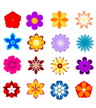 Set of flower blossoms and petals isolated on white background for design Stock Vector - 19976378