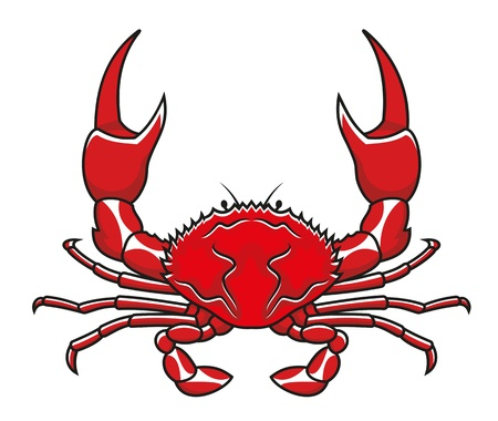 Red crab in cartoon style isolated on white background Vector