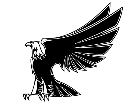 Powerful and majestic eagle for mascot, tattoo or heraldry design Vector