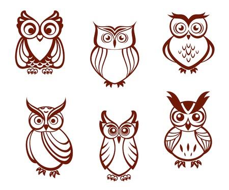 sowa: Zestaw sowy kreskówek dla mądrości lub projekt koncepcji edukacji. Wszystkie ptaki są izolowane na białym tle