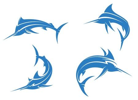 pez espada: Big Blue marlin con la nariz afilada aislados sobre fondo blanco para el diseño de la pesca deportiva Vectores