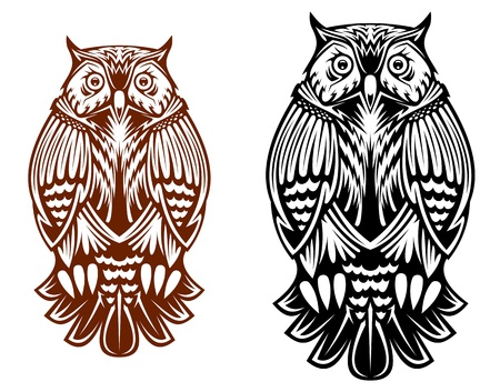Beautiful owl isolated on white background for sport team mascot, tattoo or emblem design Illustration