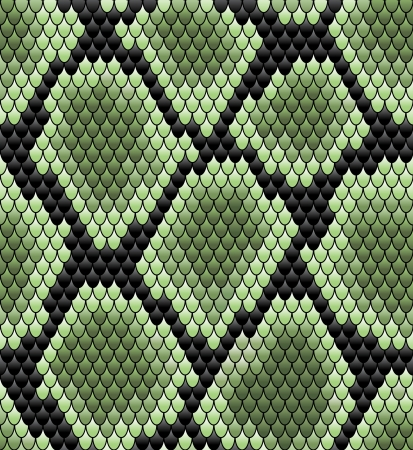 venomous snake: Green seamless snake skin pattern for background design