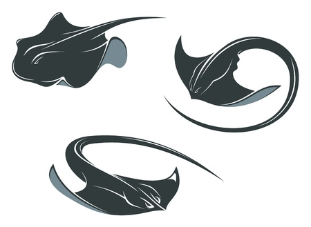 underwater: Stingray fish mascots in cartoon style isolated on white Illustration
