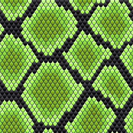 venomous snake: Green seamless pattern of reptile  skin for background design