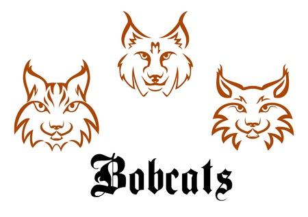 lince: Bobcats y los linces de la mascota o el diseño del tatuaje Vectores