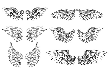 ali angelo: Set di aquila o angelo ali per araldica e disegno del tatuaggio Vettoriali