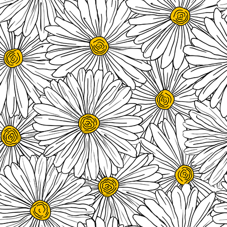 white daisy: Seamless floral background with camomiles for design