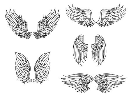 ali angelo: Ali araldici set isolato su sfondo bianco per il design Vettoriali