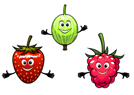 Gooseberry, raspberry and strawberry berries in cartoon style