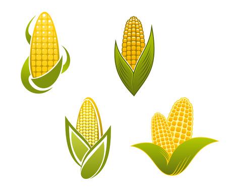 ядра: Желтые иконки кукурузы и символы для сельского хозяйства дизайна