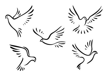 espiritu santo: Las palomas y las palomas establecidos para el concepto de la paz y diseño de la boda Vectores
