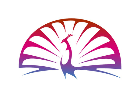 peafowl: Stylized modern illustration of a proud peacock doing a mating display with spread tail feathers in shades of graduated purple Illustration