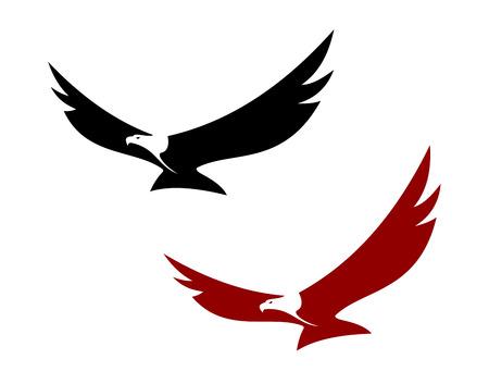 Graceful hochfliegender Adler mit ausgebreiteten Flügeln in zwei Farbvarianten, Vektor-Illustration