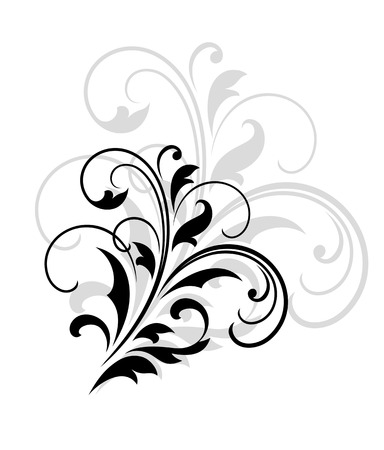 larger: Swirling dainty foliate calligraphic design in black with a larger repeat element in grey behind over a white background, vector illustration Illustration
