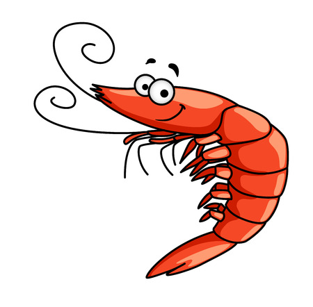 shrimp: Happy red prawn or shrimp with curly feelers and a smiling face, cartoon vector illustration