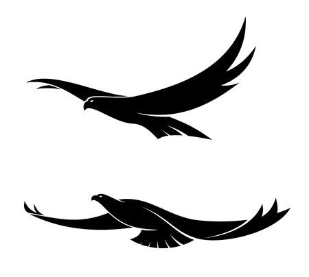 Silhouette in black of two graceful flying birds