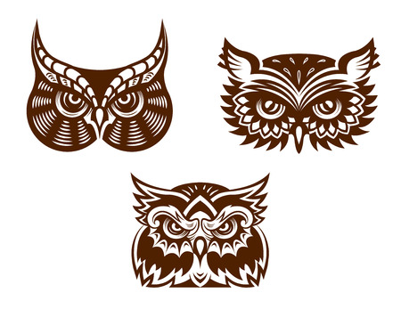 Brown and white wise old owl faces with decorative feather  Vector