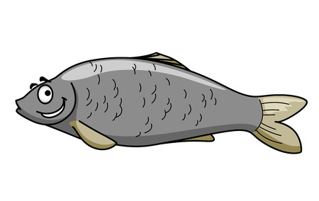 freshwater fish: Side view of a funny grey cartoon fish character  Illustration