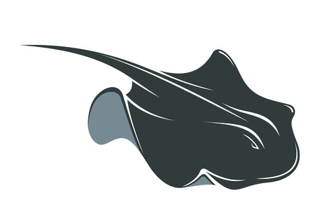 manta: Swimming manta ray with a long tail and wing-like pectoral fins, cartoon illustration isolated on white