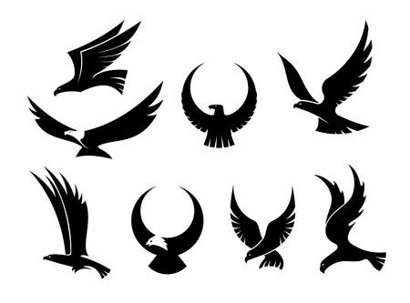 aguila americana: Setof siluetas negras de las águilas vuelan gráciles, con sus alas extendidas para la heráldica y diseño de la caza Vectores