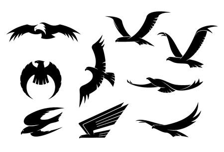 비행: 비행 독수리, 매, 송골매 및 장학 또는 마스코트 디자인의 또 다른 조류의 실루엣 세트