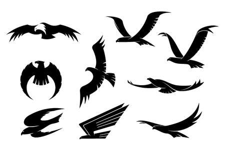 Silhouette set of flying eagles, hawks, falcons and another birds for heraldry or mascot design