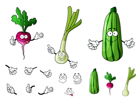 Radish, zucchini and onion vegetables in cartoon style for bio food design