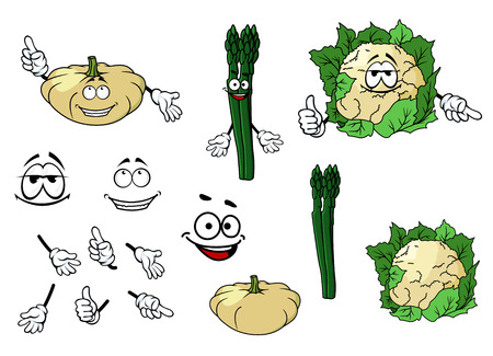 Cauliflower, zucchini and spinach vegetables in cartoon style for food design Vector