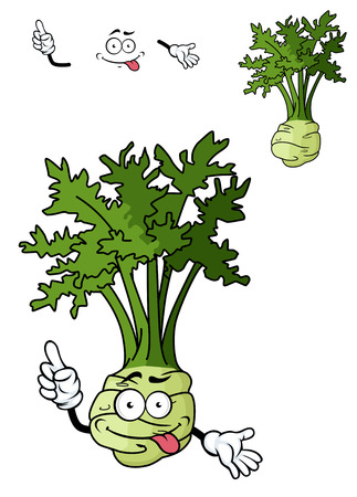 celery: Funny cartoon celery vegetable with root isolated on white for food design