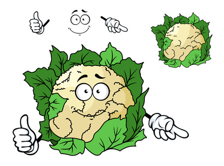 Cute happy cartoon cauliflower with bright green leaves and a smiling face, isolated on white Vector
