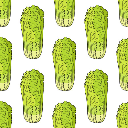 leaf lettuce: Seamless pattern of fresh cartoon Chinese lettuce in square format