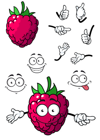 goofy: Goofy little cartoon raspberry fruit with a happy smile and green stalk isolated on white