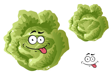 isoated: Green funny cabbage vegetable in cartoon style isoated on white background