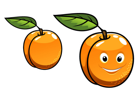 Cute happy fresh juicy orange apricot with a single green leaf, one with a happy smiling face and one plain, cartoon illustration isolated on white