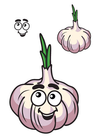 Healthy fresh garlic bulb vegetable with a happy smile and little green sprout with a second plain variation Stock Vector - 28827266
